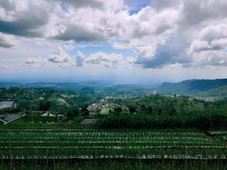 tanah cocok untuk villa kemuning ngargoyoso karanganyar
