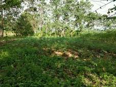 kebun 1.800 m2 daerah pengembangan kota baru pattallassang, gowa