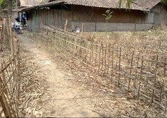 tanah darat bebas banjir